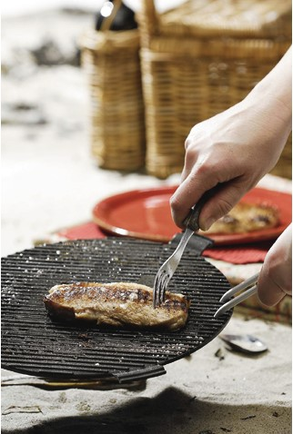 Cobb BBQ Grillplaat Plus