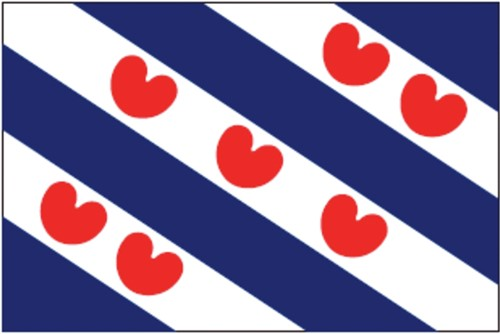 Vlag Friesland 20x30