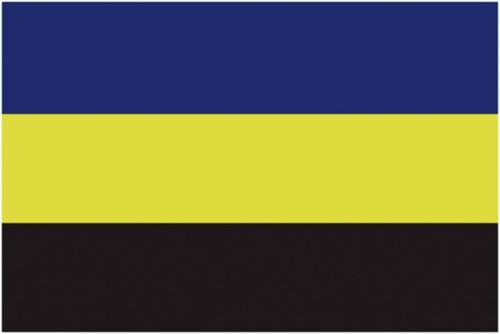 Vlag Gelderland 20x30