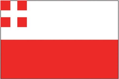 Vlag Utrecht 20x30