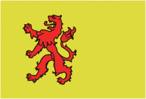 Vlag Zuid Holland 20x30
