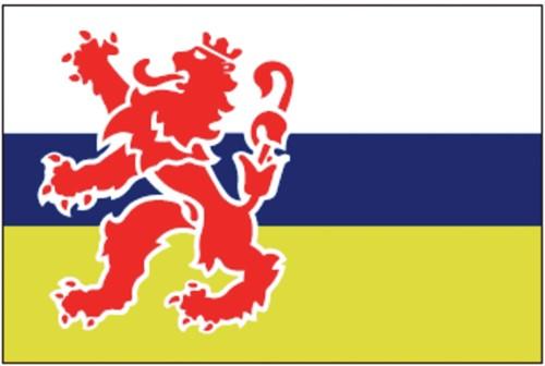 Vlag Limburg 20x30