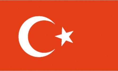 Vlag Turkije 20x30