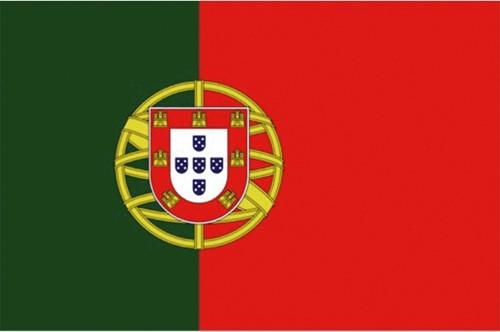Vlag Portugal 30x45